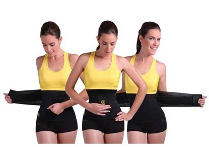 Picture of Hot Shapers Belt Instant Training