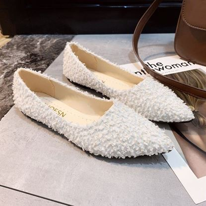 Picture of Woman  Flat Loafer Shoes WS109